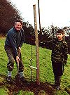 Planting the new Bampton orchard