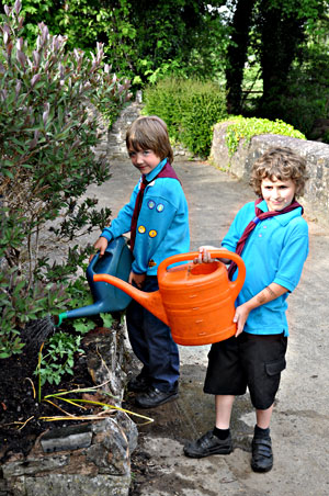 Beavers helping out