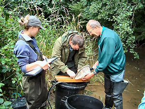 Environment Agency survey of the river