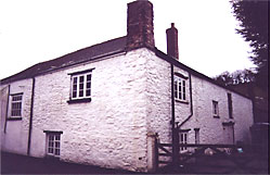 The Old House, Frog St